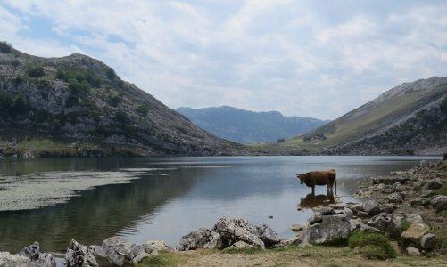 Vacaciones de verano en Asturias con niños