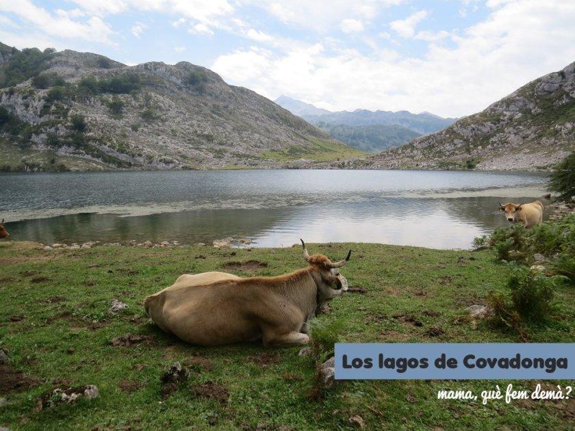 Una vaca en los lagos de Covadonga