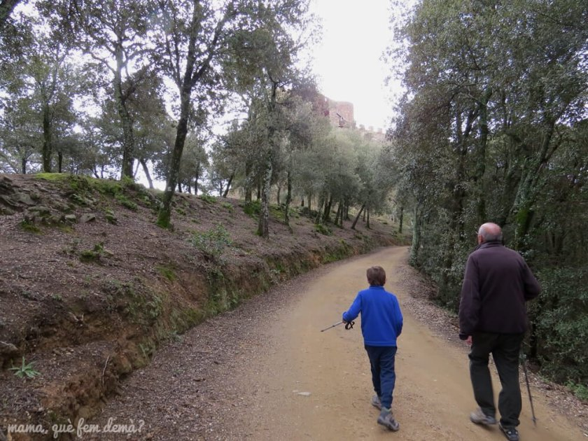 castell_montsoriu04