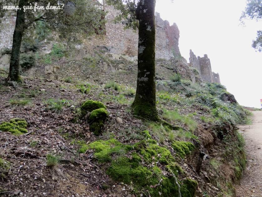 castell_montsoriu23