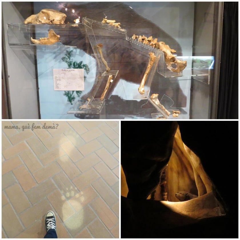 museu_moia01