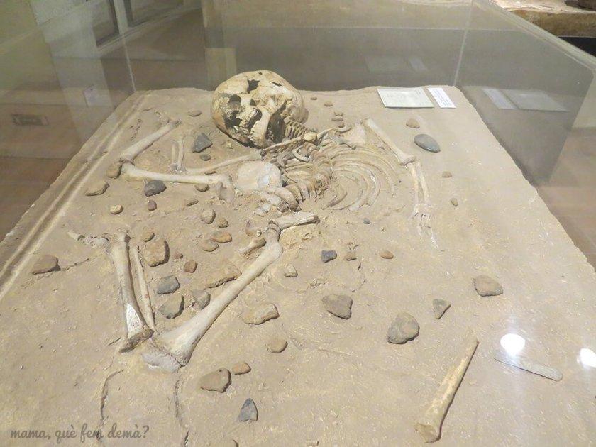 museu_moia04