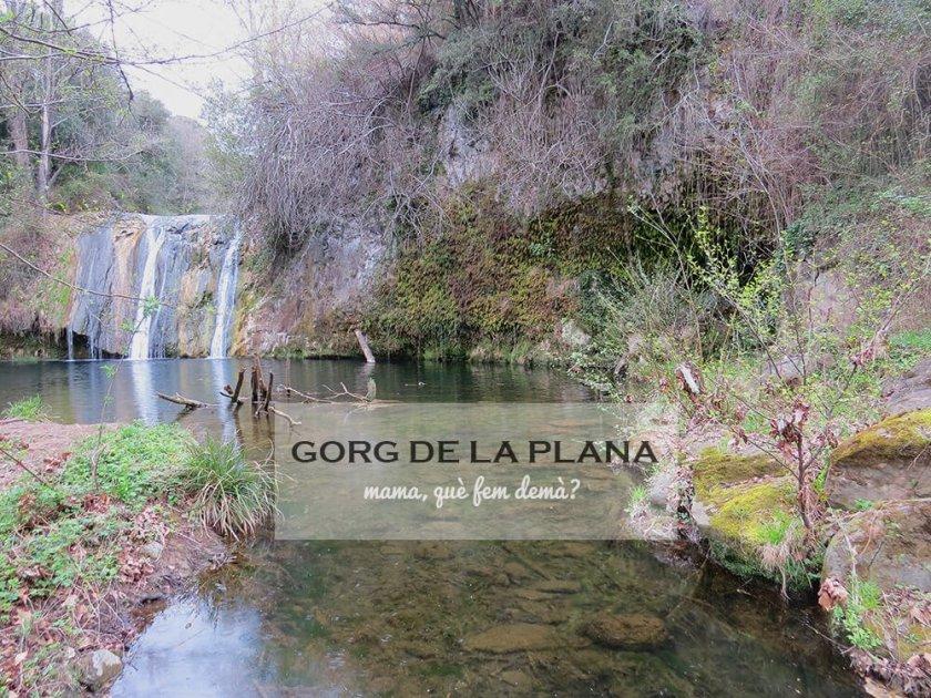 gorg_de_la_plana00