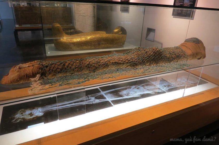 museu_egipci08
