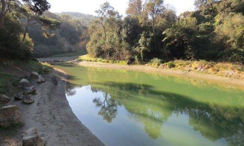 Del Baixador de Vallvidrera a Les Planes por la Font de Can Castellví: excursión por Collserola