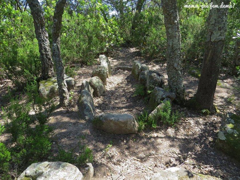 Cista de la Carretera de Calonge en la excursión del gegants del bosc i la cova d'en Daina
