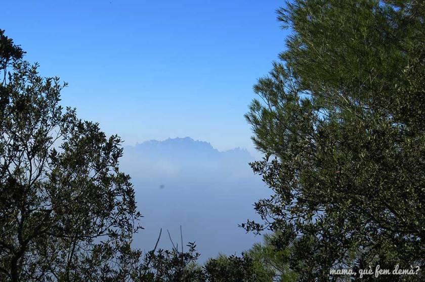 Montserrat desde la excursión de la Font de la Potella