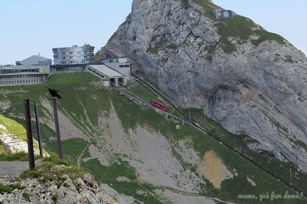Tren cremallera desde la ruta de las flores, con el mirador Esel detrás.