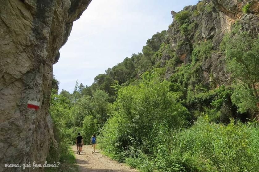 barranc de la vall excursión cascada de la vall de montblanc
