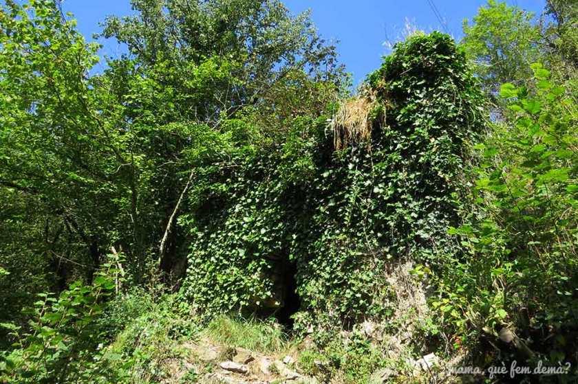 Ruinas de antiguos molinos cubiertos de vegetación en Vidrà