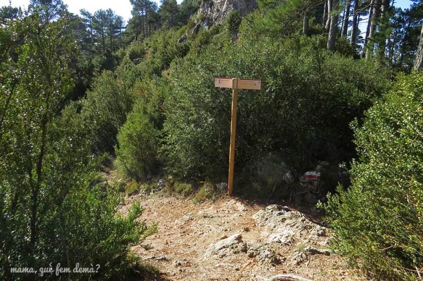 GR excursión Mont Caro