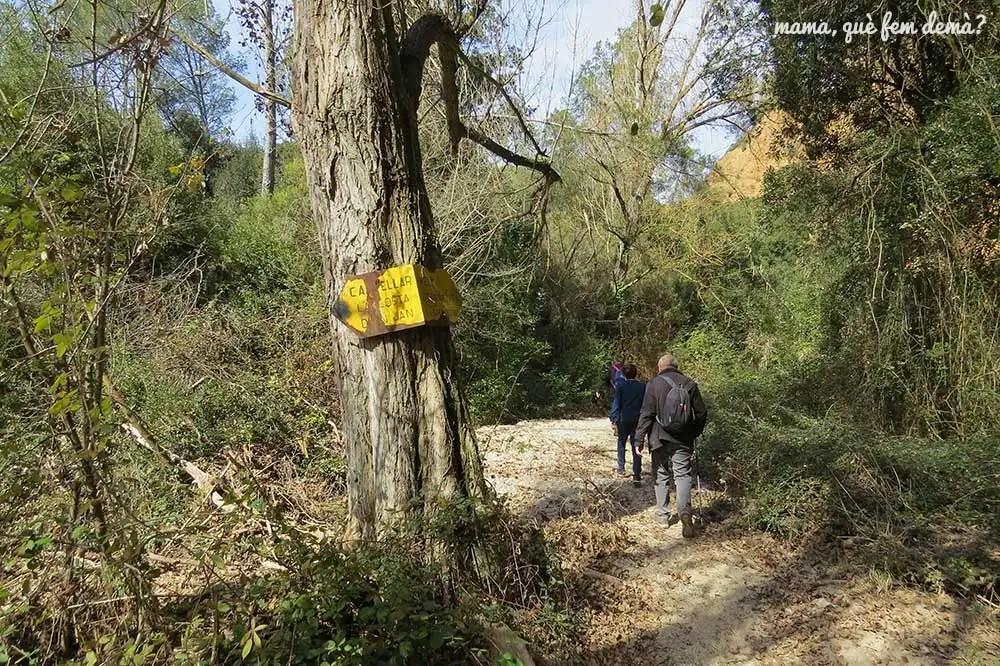 poste amarillo en un arbol indicando el Torrent de la Penitenta