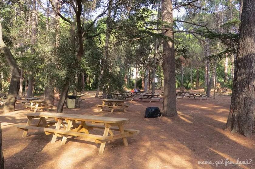 Zona de mesas de picnic del Parc Samà