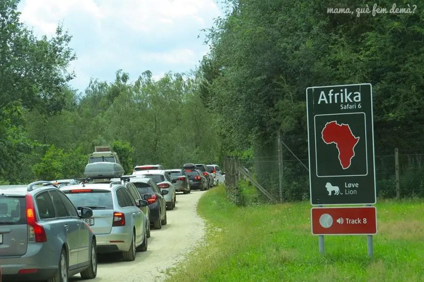 cola de coches para entrar al safari en Givskyd Zoo
