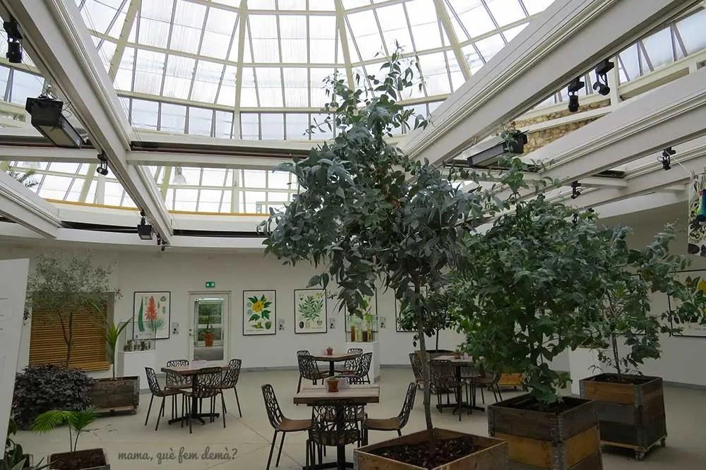 Cafetería del jardín botánico.