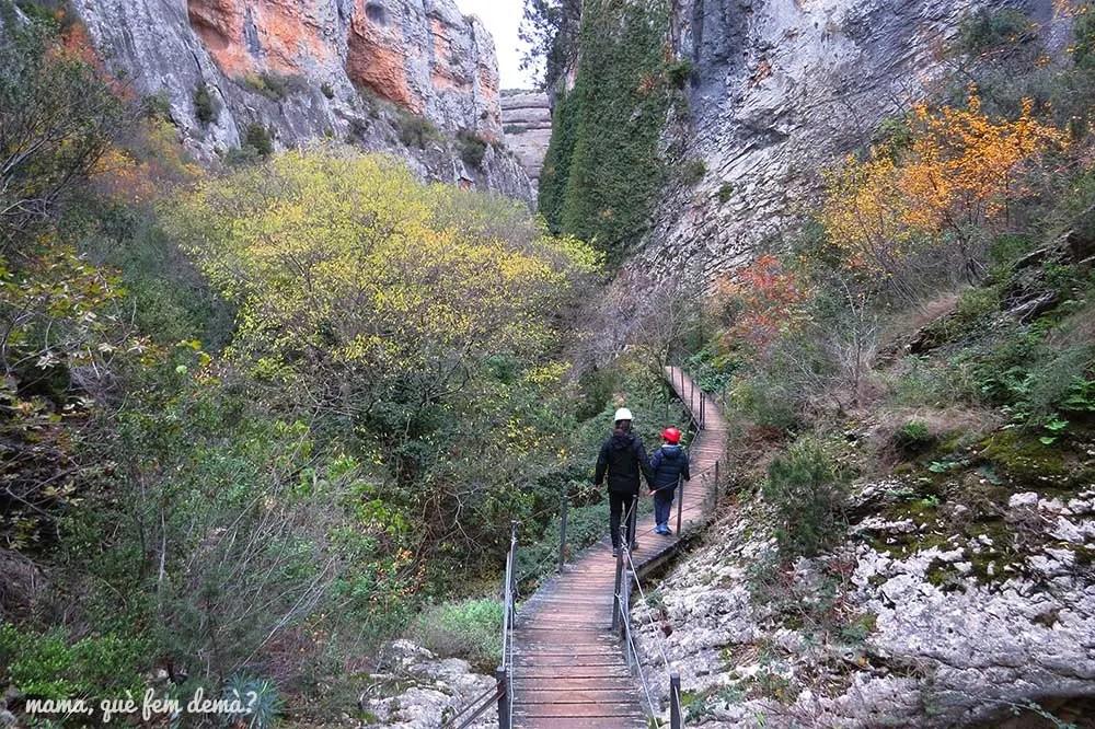 Sendero con pasarelas de madera de la excursión del río Vero de Alquézar
