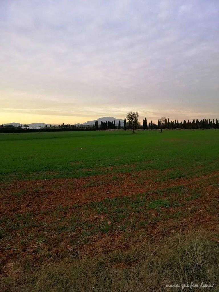 La mola desde el Parc Agrari de Sabadell