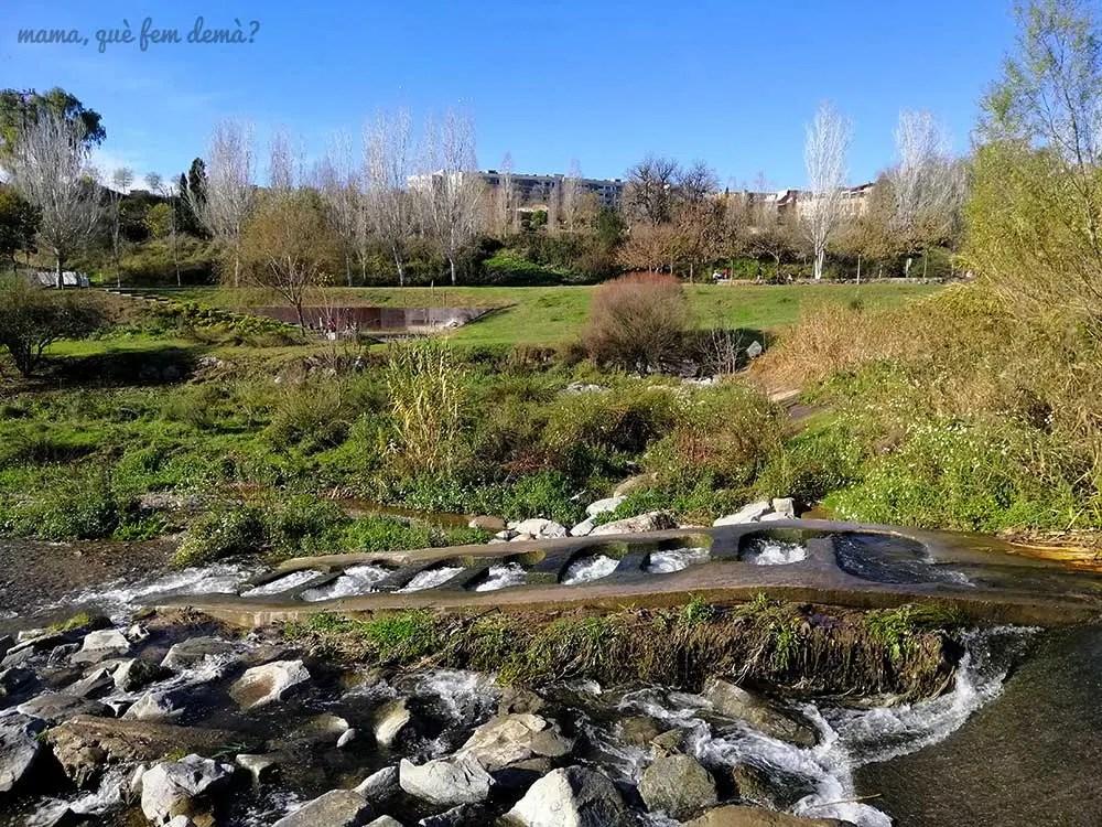 paso de fauna de la font dels gitanos de sabadell