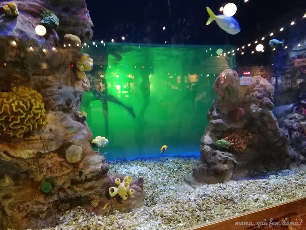 Pecera del parque acuático Lalandia Aquadome en Billund