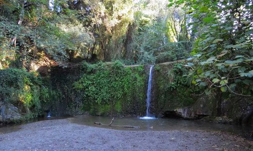 Excursión circular a la cascada de la Rierada de Molins de Rei