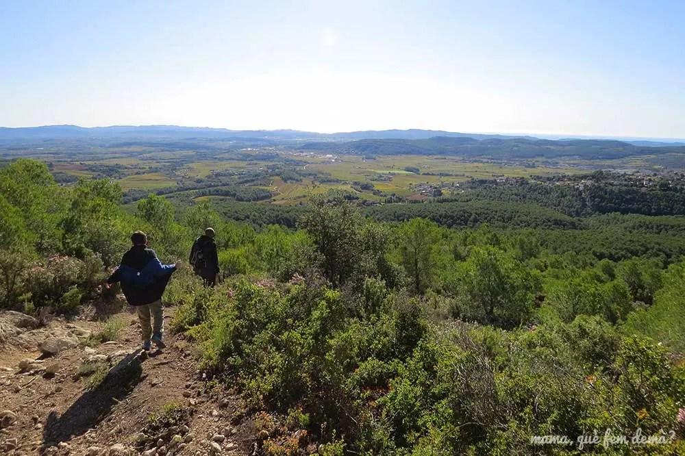 Camino que baja del Santuari del Foix a les Valls del Foix