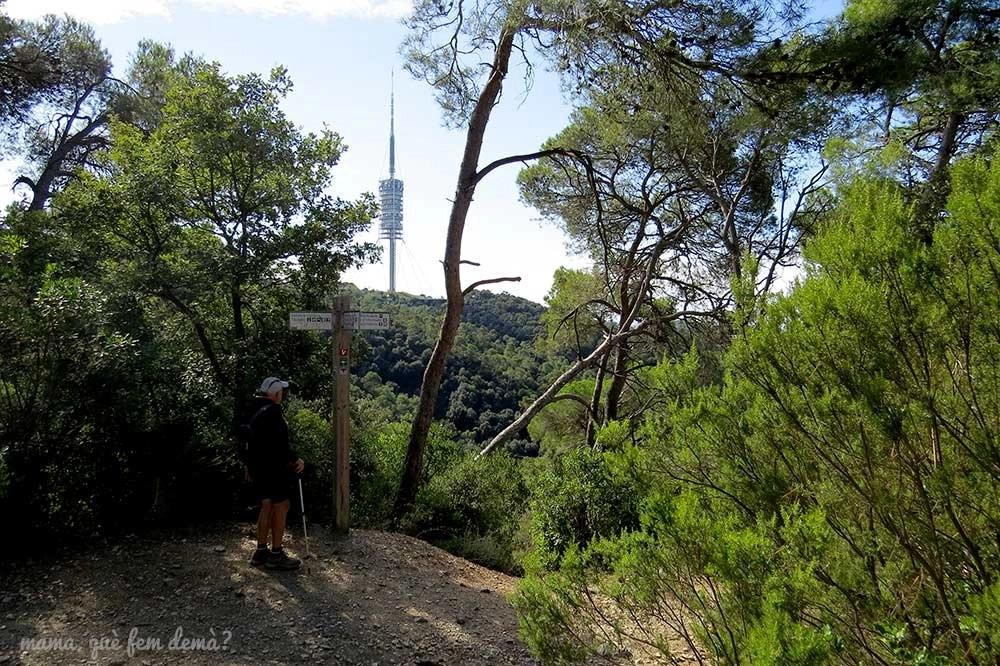 Poste indicador con hombre mirandolo en la serra d'en Cardona. Por detrás está la Torre de Collserola