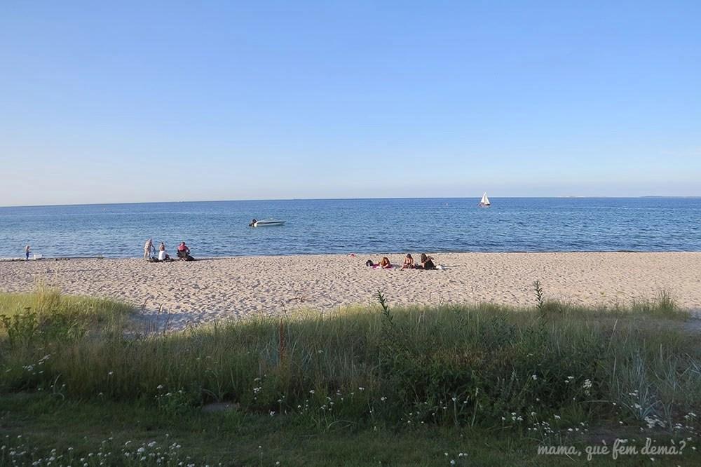 playa Hasmark Strand en Dinamarca, al atardecer