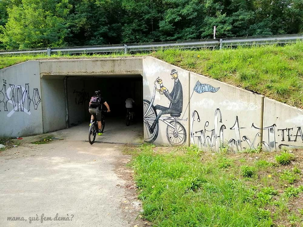 Túnel en Sant Esteve d'en Bas en la ruta del Carrilet