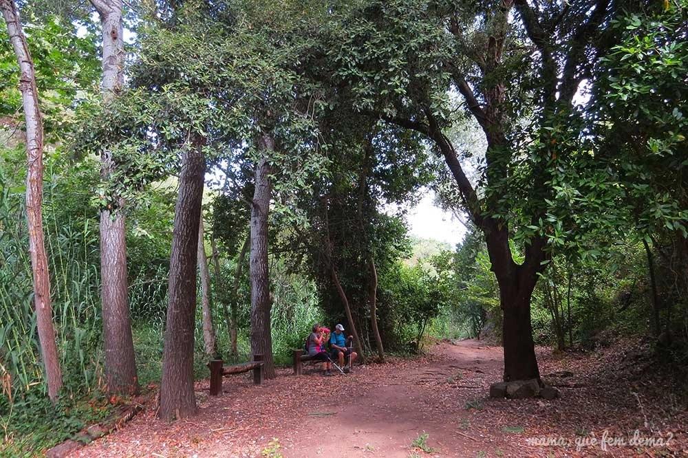 Zona con bancos en el Camí del Rec de la Selva del Camp