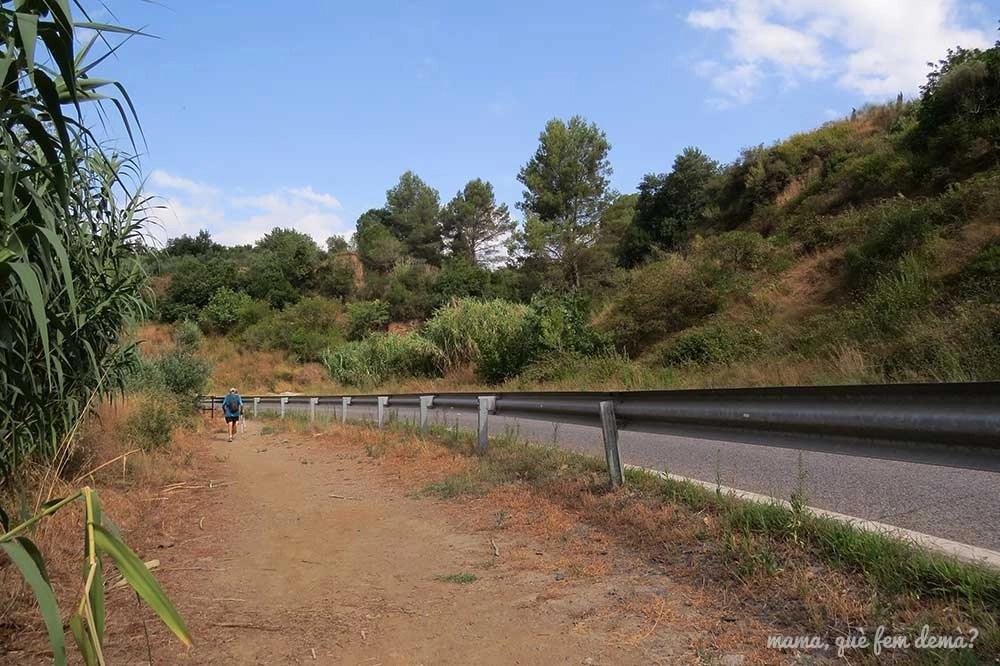 Tramo de carretera en el Camí del Rec de la Selva del Camp