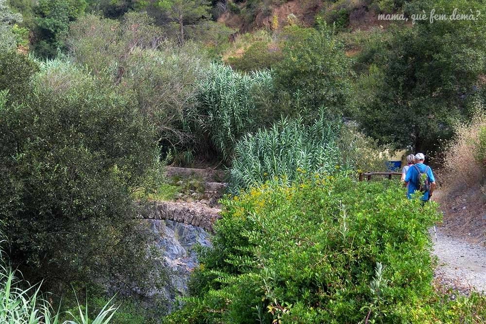 Pont Sec del Camí del Rec de la Selva del Camp