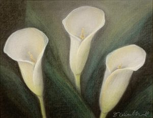 "Diana Calautti, Lily Trio, Drawing (charcoal), 11""x14"", $400"