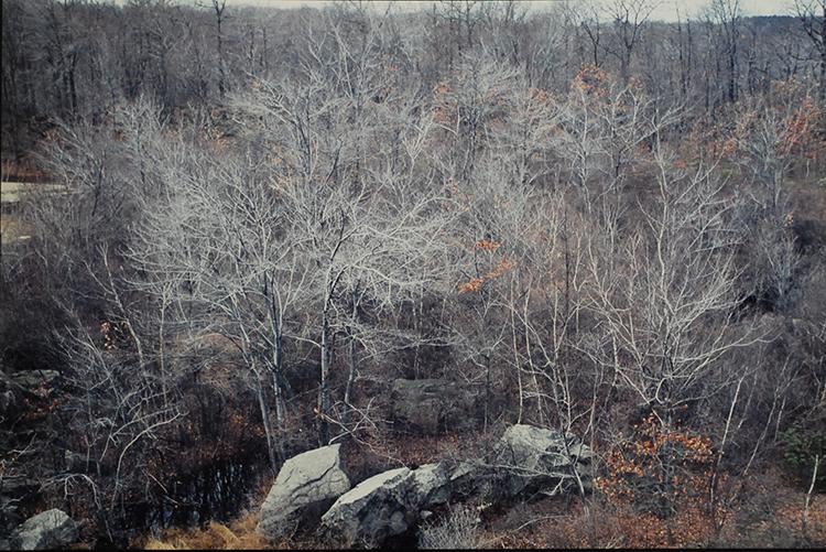 """Ellen Valle, The Quarry, Photograph, 16""""x20"""", $450"""