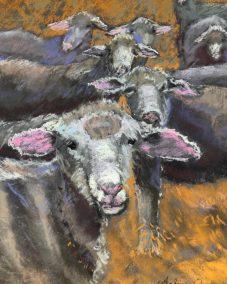 "Arlene Oraby, Sheep You See, Pastel, 11""x14"", $200"