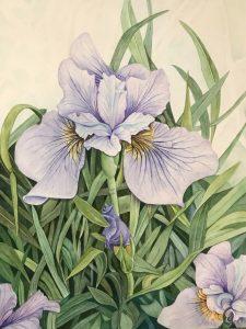 """Lorie Gurian, Iris, Watercolor, 29""""x23"""", $600"""