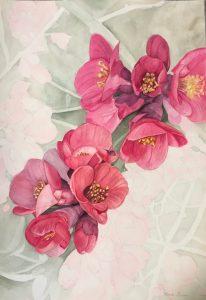 "Lorie Gurian, Quince, Watercolor, 19""x25"", $450"