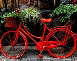 "Peggy Opalek, Bicycle, Photograph, 11""x14"", $375"