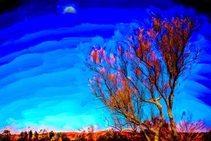 "H. David Stein, Phantasmagorical Photograph-Bush and Moon, Photograph, 12""x18"", $350"