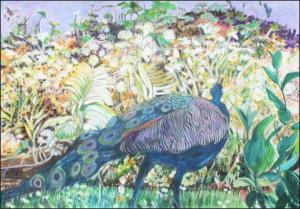 "Vivian Bergenthal, Prowling Peacock, Mixed media, 11""x17"", $500"