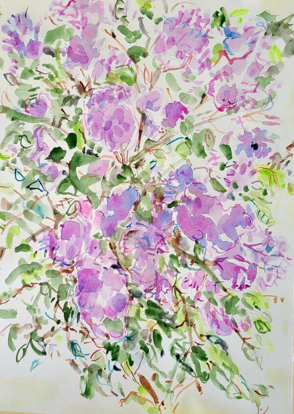 "Riva Kaplan, Lilac time, Watercolor, 16.5""x12.5"", $235"