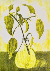 "Dawn Leone, Propagating Ficus, Woodcut Reduction, 8""x11"", $200"