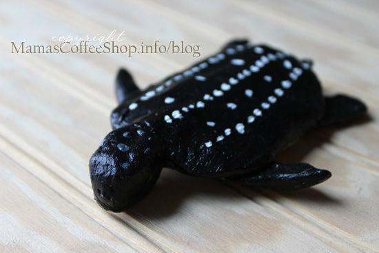 MCS-Leatherback-Turtle