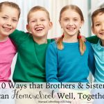 10 Ways Brothers and Sisters Can Homeschool Well Together