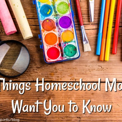5 Things Homeschool Moms Want You to Know