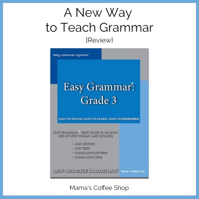 Easy Grammar: Grade 3 {Review}