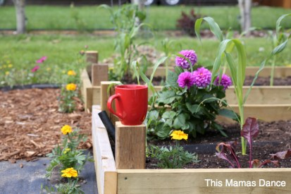 red mug in the garden