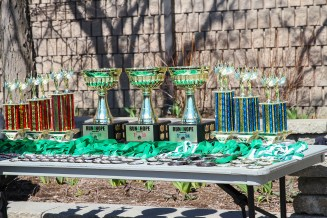 The awards table