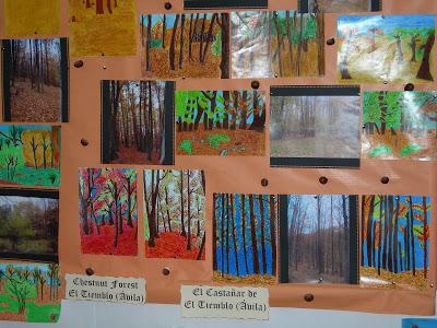 Año Internacional de los Bosques 2011: los Niños ven el Bosque 17