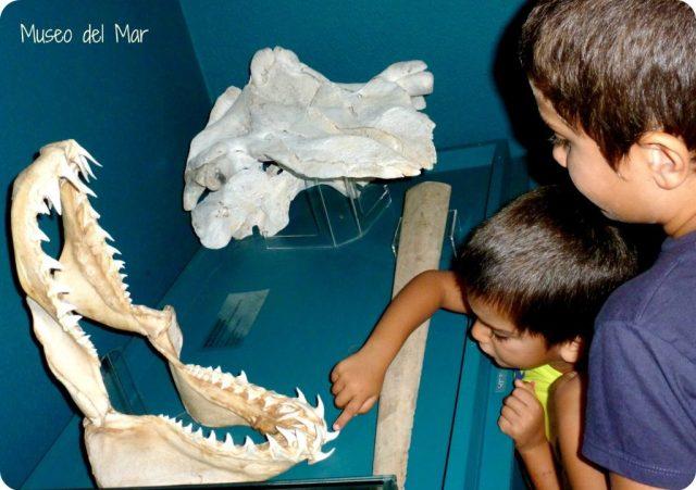 Museos e Historias para Vivir en Familia 5