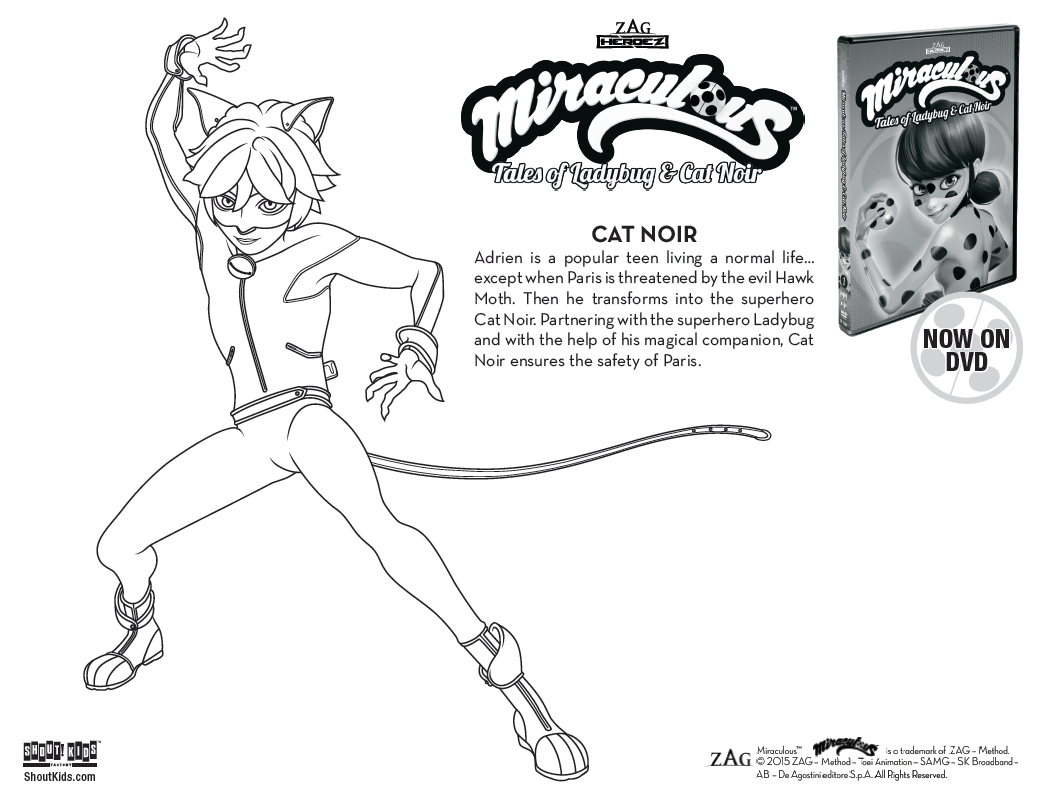 Miraculous Tales Of Ladybug Cat Noir Coloring Sheets